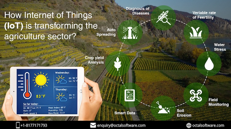 How Internet of Things (IoT) is transforming the agriculture